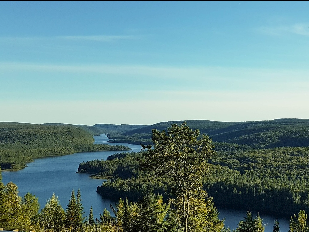 ICE Network CoLab Summary:  Sustainable Forestry Management and the Clean Energy Transition